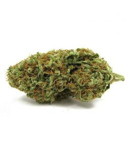 marihuana legal